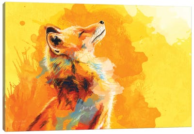 Blissful Light Canvas Art Print