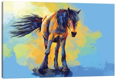 Horse In The Sunlight Canvas Art Print