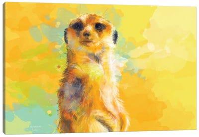 Dear Little Meerkat Canvas Art Print