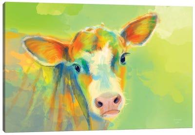 Summer Cow Canvas Art Print