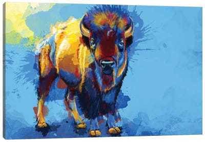 On The Plains Canvas Art Print
