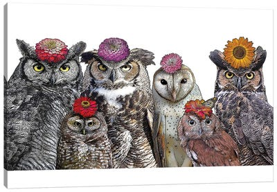 Owls With Flowers Canvas Art Print