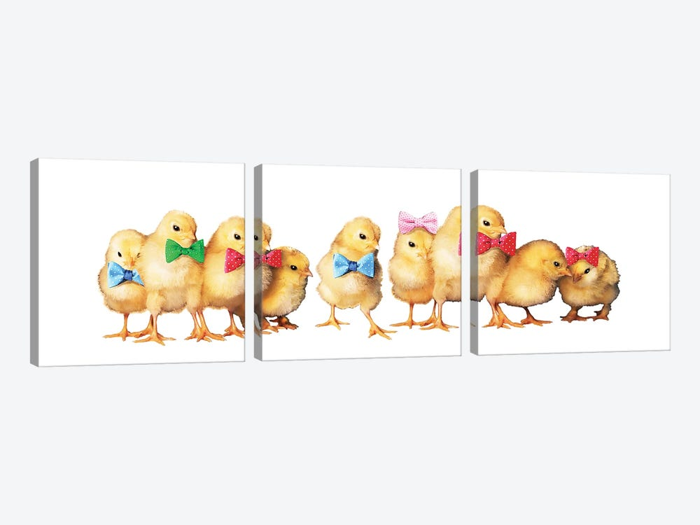 Chicks With Bow Ties by Eric Fausnacht 3-piece Canvas Artwork