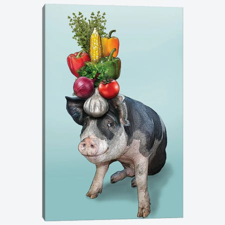 Pig With Vegetables On Head I Canvas Print #FAU164} by Eric Fausnacht Canvas Art Print