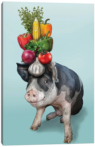 Pig With Vegetables On Head I Canvas Art Print