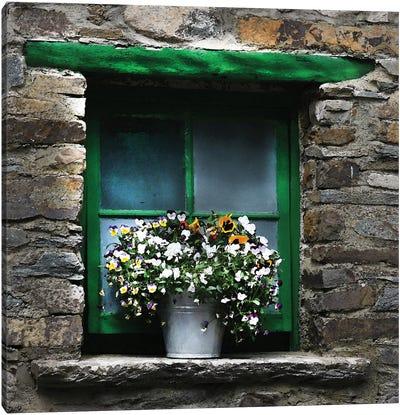 Ireland Green Window With Pansies Canvas Art Print