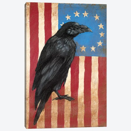 American Flag Crow Canvas Print #FAU1} by Eric Fausnacht Canvas Art