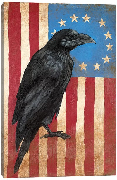 American Flag Crow Canvas Art Print