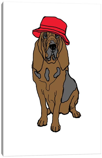 Bloodhound With Hat Canvas Art Print