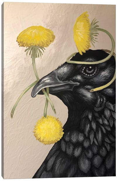 Crow And Dandelions Canvas Art Print