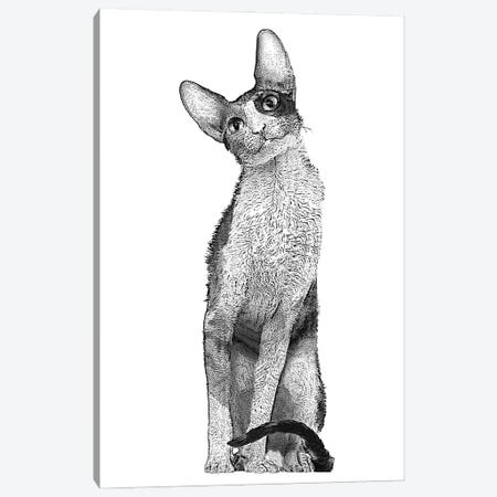 Tall Cat Canvas Print #FAU58} by Eric Fausnacht Canvas Wall Art