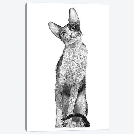 Tall Cat Canvas Print #FAU58} by Eric Fausnacht Canvas Wall Art
