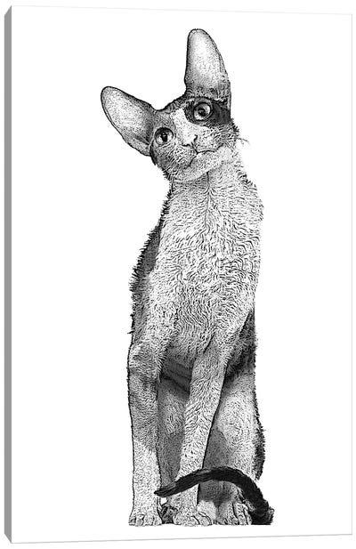 Tall Cat Canvas Art Print