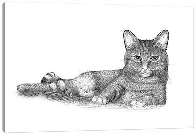 Jake Canvas Art Print