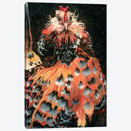 Belgian Bearded 3-Piece Canvas #FAU5} by Eric Fausnacht Canvas Art Print