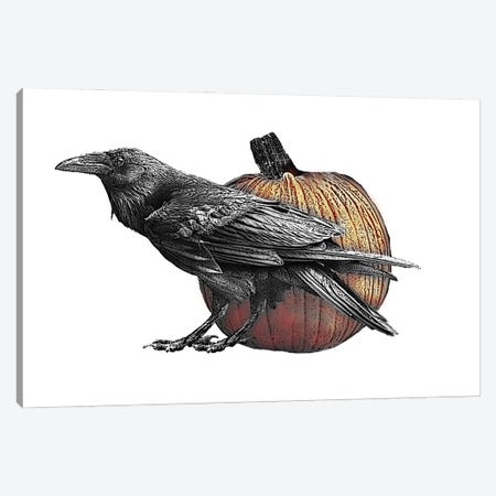Raven With Pumpkin Canvas Print #FAU64} by Eric Fausnacht Canvas Art