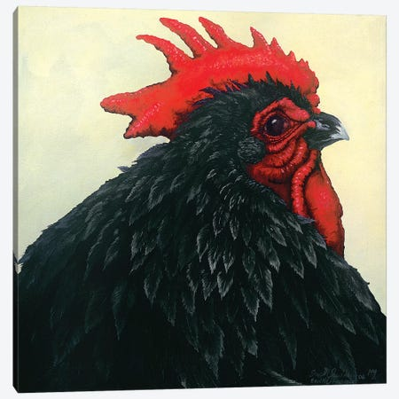 Black Rooster Portrait Canvas Print #FAU6} by Eric Fausnacht Canvas Print