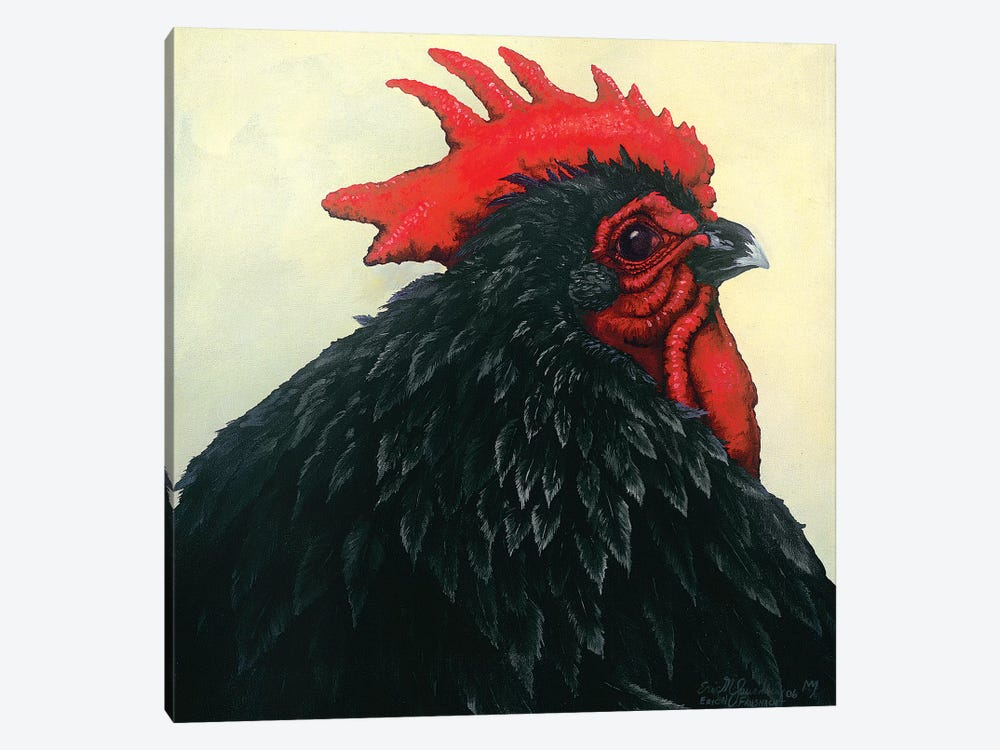Black Rooster Portrait by Eric Fausnacht 1-piece Canvas Art Print