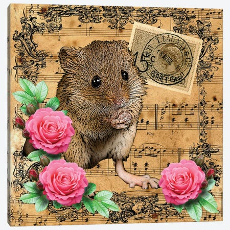 Music Mouse Canvas Print #FAU79} by Eric Fausnacht Canvas Wall Art