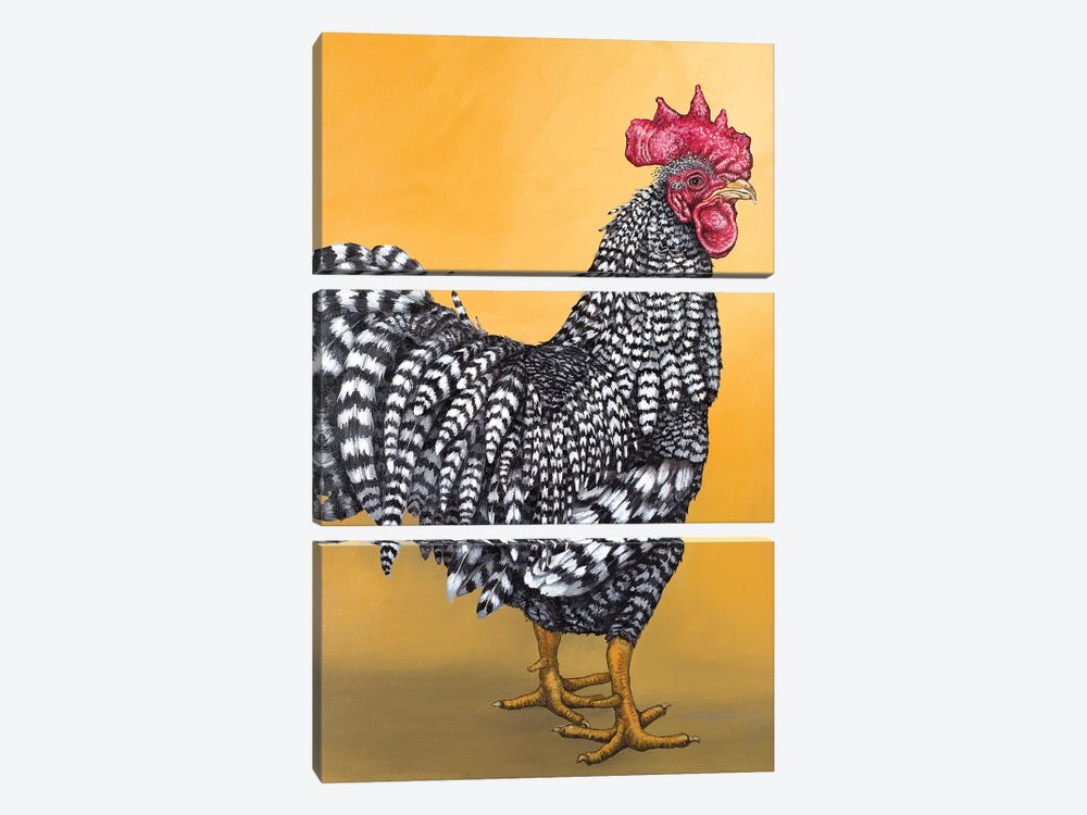 Black And White Rooster by Eric Fausnacht 3-piece Canvas Art