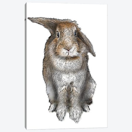 5 O'Clock Rabbit 3-Piece Canvas #FAU80} by Eric Fausnacht Canvas Art Print