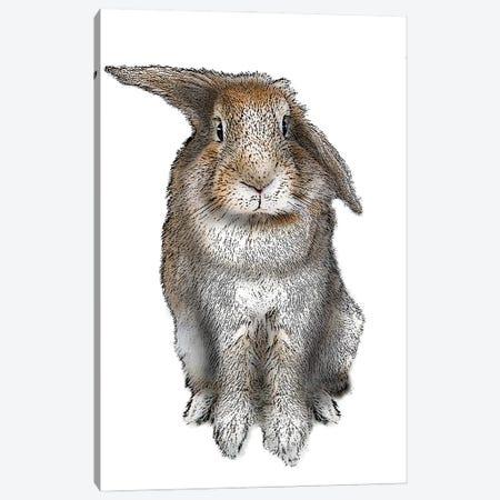 5 O'Clock Rabbit Canvas Print #FAU80} by Eric Fausnacht Canvas Art Print