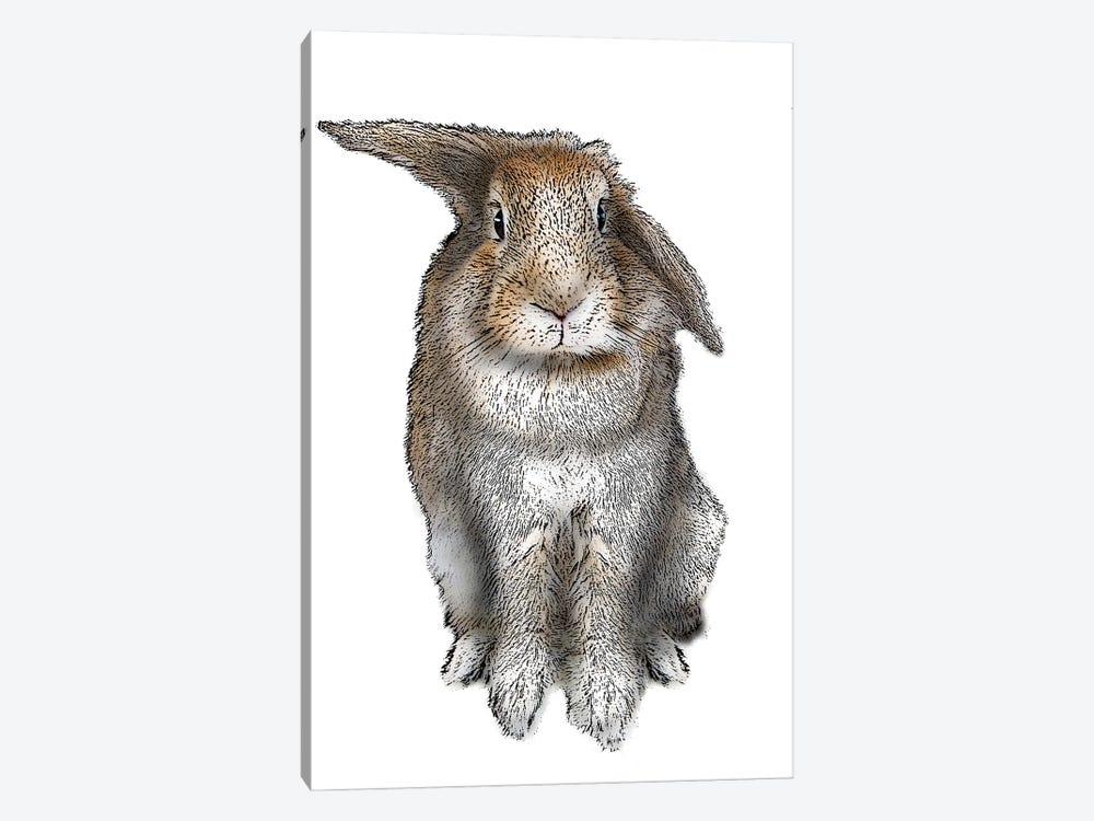 5 O'Clock Rabbit by Eric Fausnacht 1-piece Canvas Print