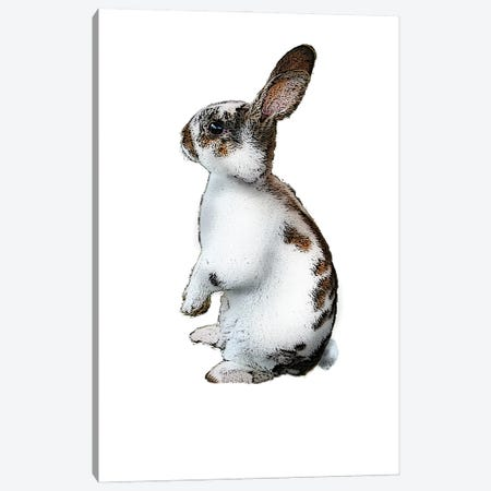 Standing Rabbit Canvas Print #FAU83} by Eric Fausnacht Canvas Print
