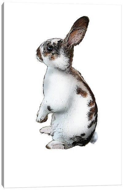 Standing Rabbit Canvas Art Print