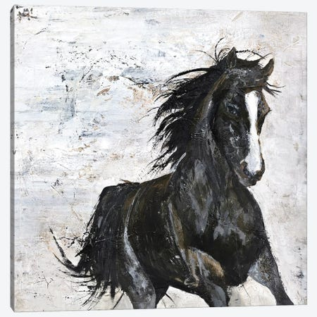 Wild Horse I Canvas Print #FBK153} by Design Fabrikken Canvas Print