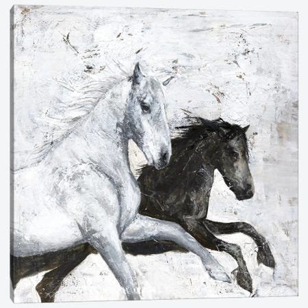 Wild Horse II 3-Piece Canvas #FBK154} by Design Fabrikken Canvas Art