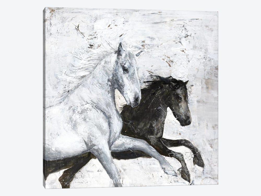 Wild Horse II by Design Fabrikken 1-piece Canvas Print