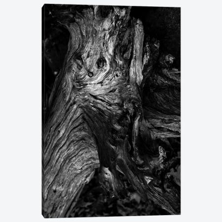 Black Wood Canvas Print #FBK211} by Design Fabrikken Canvas Wall Art