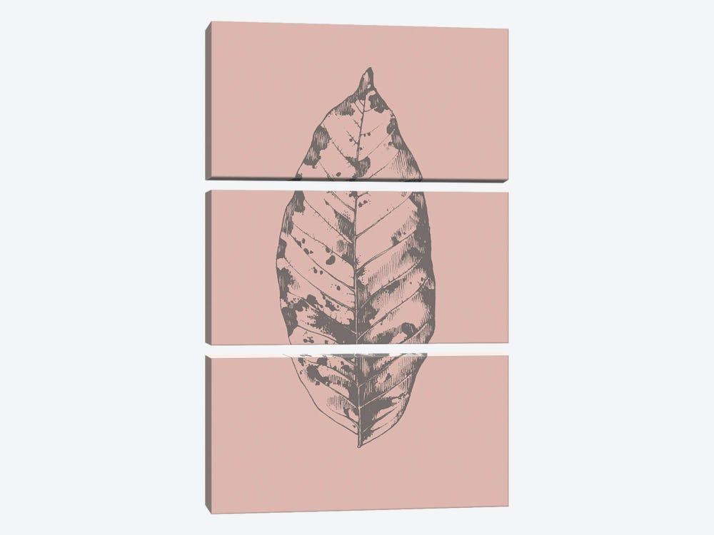Botanica I by Design Fabrikken 3-piece Canvas Art Print