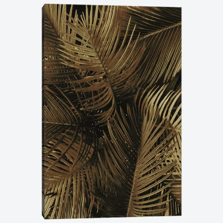 Golden Palm II Canvas Print #FBK287} by Design Fabrikken Canvas Wall Art