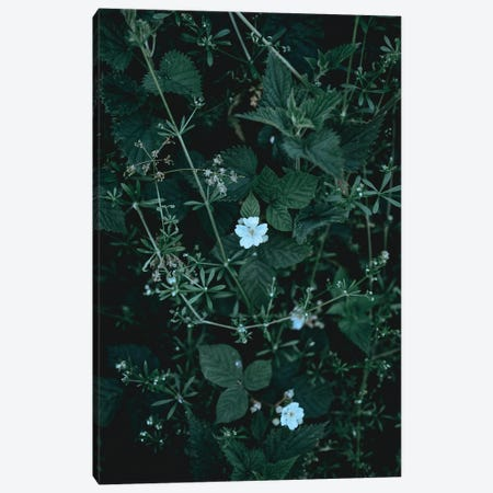 Greenery Canvas Print #FBK291} by Design Fabrikken Canvas Wall Art