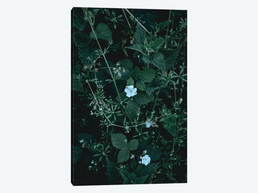 Greenery by Design Fabrikken 1-piece Canvas Artwork