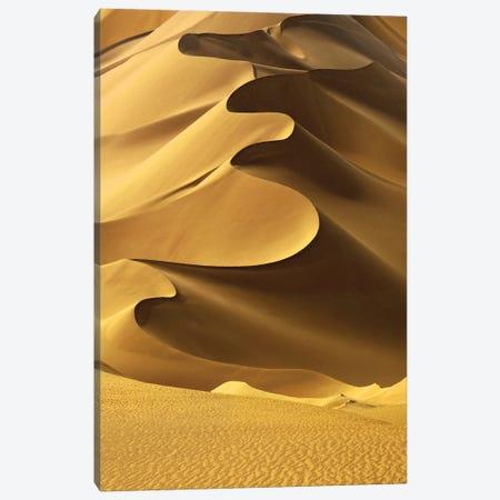 In the Dunes II Canvas Print #FBK308} by Design Fabrikken Canvas Art