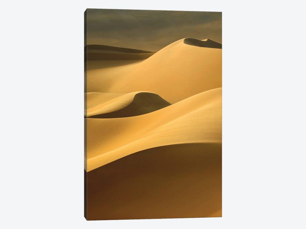 In the Dunes III by Design Fabrikken 1-piece Canvas Art
