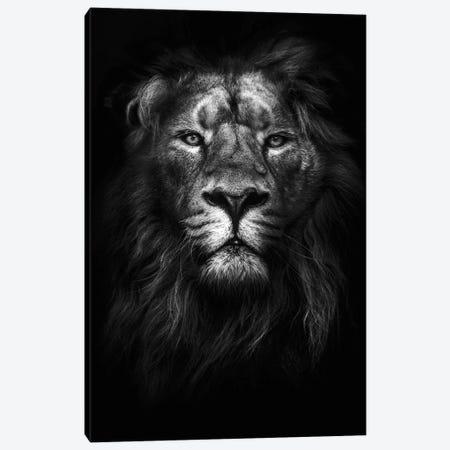 King of Kings Canvas Print #FBK316} by Design Fabrikken Canvas Wall Art
