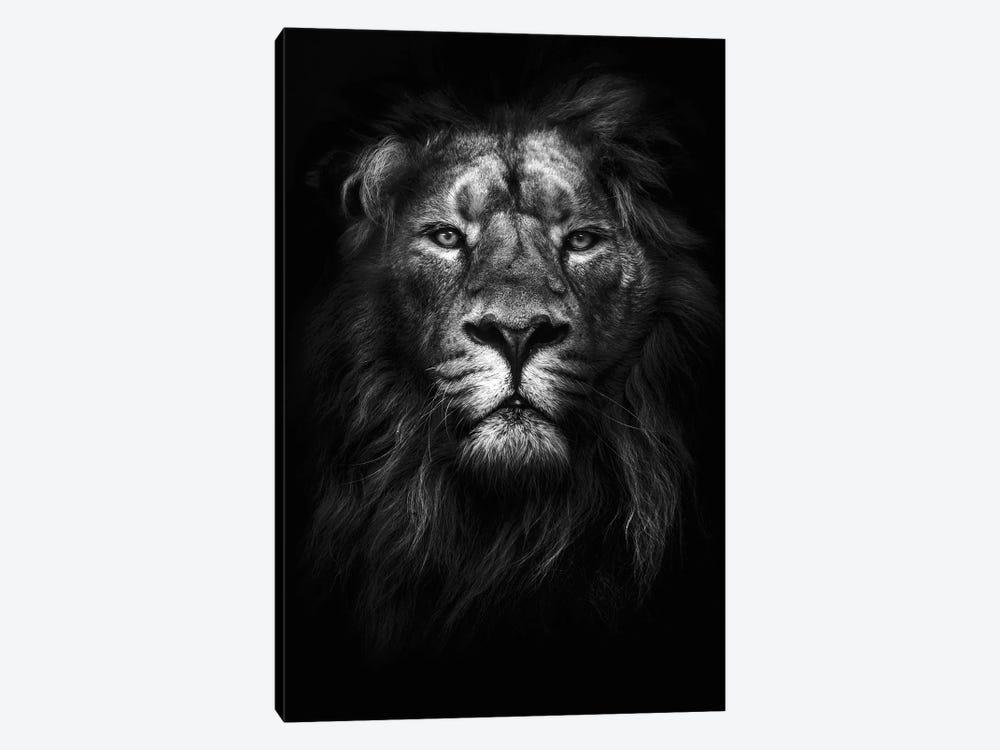 King of Kings by Design Fabrikken 1-piece Canvas Art