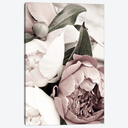 Opulent I Canvas Print #FBK354} by Design Fabrikken Canvas Art