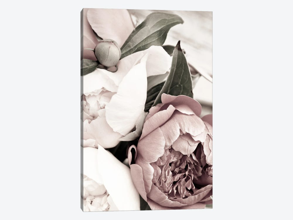 Opulent I by Design Fabrikken 1-piece Canvas Art
