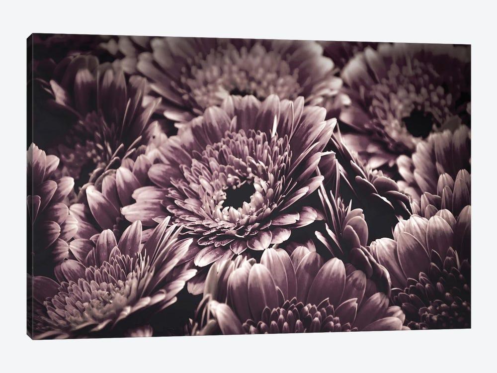 Opulent IV by Design Fabrikken 1-piece Canvas Art Print