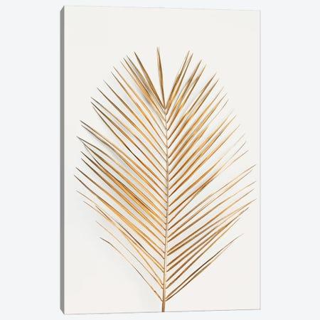 Palm Leaf Gold Canvas Print #FBK360} by Design Fabrikken Canvas Art