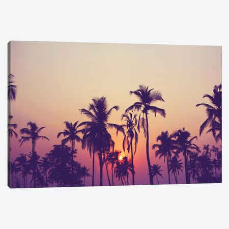 Palm Sky I Canvas Print #FBK361} by Design Fabrikken Canvas Artwork