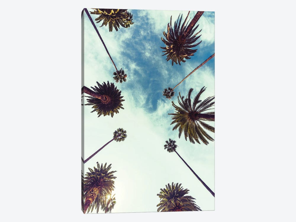 Palm Sky II by Design Fabrikken 1-piece Canvas Art Print