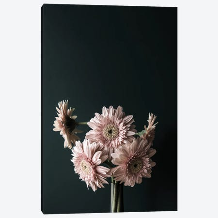 Pink Black Canvas Print #FBK375} by Design Fabrikken Canvas Art