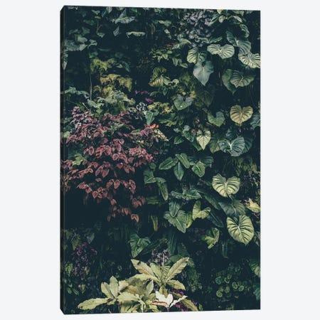 Plant Wall Canvas Print #FBK380} by Design Fabrikken Canvas Art