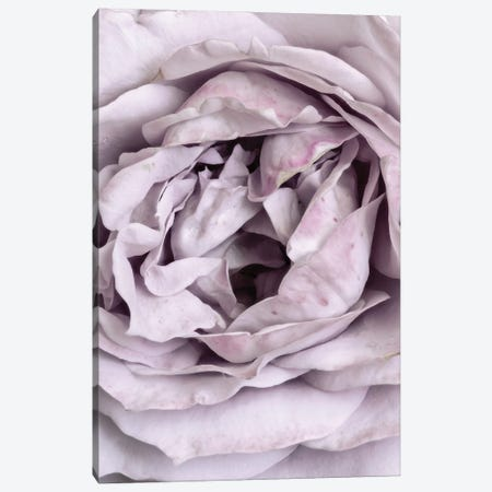 Rose Heart Canvas Print #FBK394} by Design Fabrikken Canvas Artwork